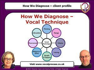 Webinar 2 How We Diagnose part 2: Vocal Technique
